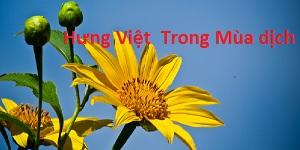 Hưng Việt và những nỗ lực trong mùa dich covid-19